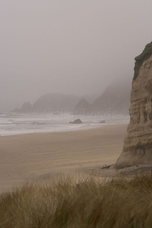 The fog shrouds this beach scene in a moody quietness that wouldn't be there on a sunny day